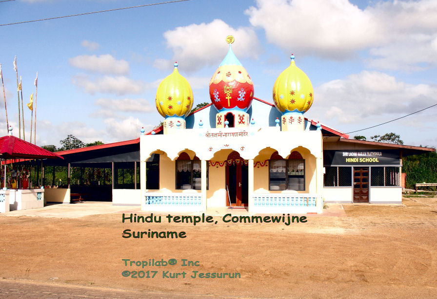 Hindu tempel in Commewijne