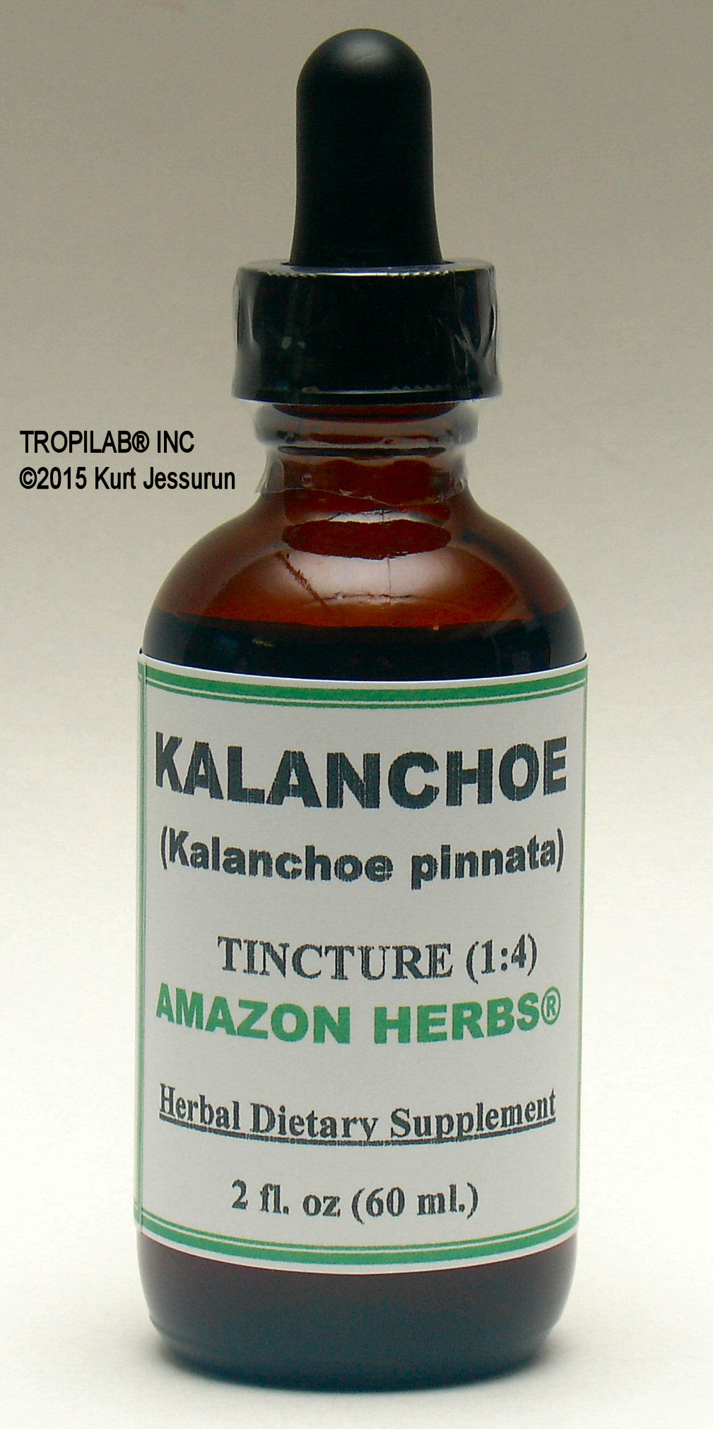 Kalanchoe pinnata, Air plant tincture only for US$18.65. Used against headaches, backaches and rheumatism. Against upper