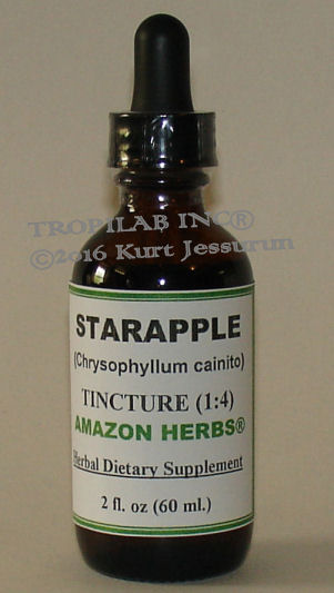Chrysophyllum cainito (Star apple) tincture