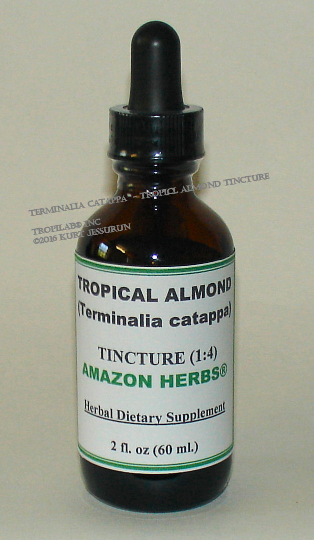 Terminalia catappa - Tropical almond tincture - Tropilab. Has antibacterial properties; works against Gram positive and 