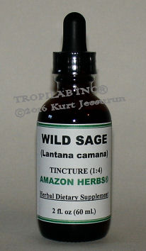 Lantana camara-Wild sage tincture, price US$18.65 p/2 fl oz. This medicinal plant is used for the treatment of skin itches, as an